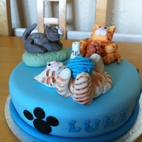 Cat Cake A selection of cats for a 10 yr old that loves cats