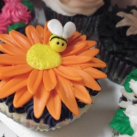Spring Has Sprung! White, chocolate, yellow, & raspberry cupcakes with buttercream and fonant butterflies, ladybugs, snails, bees, and flowers.