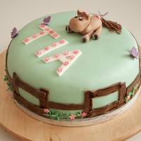 Girlie Horse Cake Birthdays cake for a little girl who loves horses.