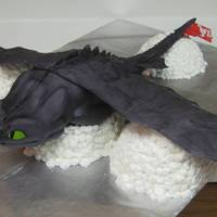 "Toothless From How To Train Your Dragon I made this cake for my son's 9th birthday. The board the cake is on is 20""x30"", so Toothless is roughly 20""x25""...."