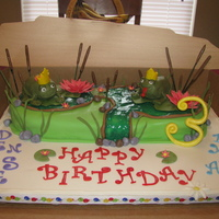 Twins Froggy Birthday Cake This is a marble mud cake with chocolate buttercream. The frogs are Rice Krispy Treats! Everything is edible except for the skewers and...