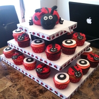Lady Bug Birthday Lady Bug Themed Smash Cake and Cupcakes. My first time making a cupcake stand, wasn't as hard as I thought it would be!