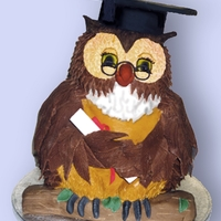 Wise Owl Graduation cake for my sister's Doctorate. Travelled to Gothenburg from UK, by plane. Luckily the seat next to me was empty.