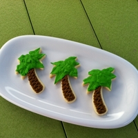 Palm Tree Cookies   NFSC with royal icing