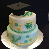 Usf Graduation Cake University of south Florida graduation cake.