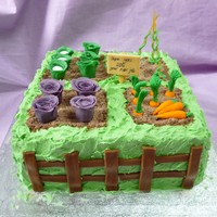 Farewell Gardening Allotment Cake Farewell Gardening Allotment cakeRich chocolate cake with golden buttercream and raspberry jam filling.Covered in green golden...