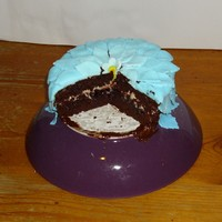 Blue Leaves Chocolate Cake