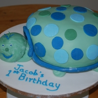 Turtle Birthday Cake turtle cake smade to match the birthday invitations