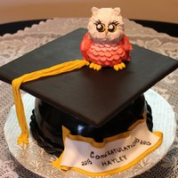 Graduation Cake Made For A Friends Daughter The Owl Was Made Out Of Rice Krispies And Fondant Thanks For Looking Graduation cake made for a friend's daughter. The owl was made out of rice krispies and fondant. Thanks for looking.