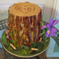 Groom's Stump Cake The groom is a hunter and both bride and groom enjoy hiking in Oregon where they come across the Oregon wild iris. Chocolate fudge cake...