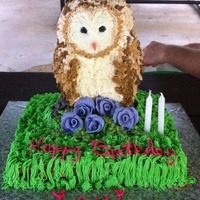 My Granddaughter Wanted A Barn Owl Cake For Her Birthday My granddaughter wanted a barn owl cake for her birthday