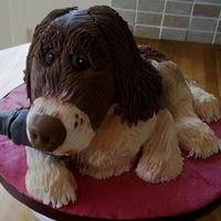 Sculpted Cake *Tess the springer spaniel xx