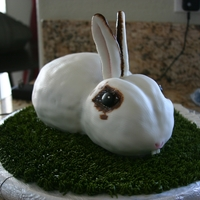 Bunny Rabbit I made this bunny cake for my very special niece.