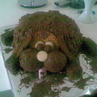 Scruffy Dog Cake Chocolate scruffy dog made from sponge, buttercream and biscuits!!!