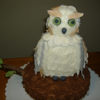 "Owl First try at making sugar feathers and free hand sculpting, owl is made from 2 - 6"" x 2"" chocolate cakes, vanilla bc and layered..."