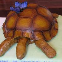 Turtle Cake My daughter wanted a turtle cake for her 4th birthday. I was also working on another cake with gum paste butterflies, when she saw the...