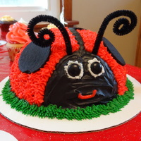 Ladybug Smash Cake Ladybug Smash Cake: Base is boxed vanilla cake mix. I used the sports ball pans for the shape. The frosting is the Wilton Buttercream...