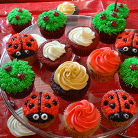 Lady Bug Themed Cupcakes Ladybug first birthday party cupcakes. All boxed cake mixes. Wilton #18 tip for red on lady bugs, eyes are pre-made candy from store....
