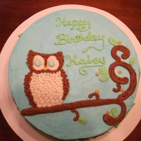 Owl Cake   A cake I made for a friends' birthday. Made the feathers and border with a leaf tip.