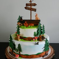 Forest Cake Forest Cake