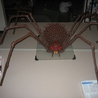 Giant Spider I wanted to see how large of a spider I could make and this is what I came up with. The legs are made from pretzel rods, the head is from...