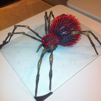 Red Haired Spider Coworker ordered this cake for his wifes birthday. She is scared of spiders, but loves cake. Body is from the ball pan, head is a large...