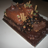 Chocolate Overload This cake was inspired by the old Dairy Queen commercials where you are flying through a chocolate canyon. This cake used 14 boxes of mix,...