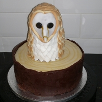 Barn Owl Cake I was asked to make a barn owl cake and I didn't know where to begin. After looking on here I found the perfect thing. I wanted to...
