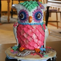 Owl Cake Owl Cake, covered in ganache and fondant, for 12 year old Birthday..
