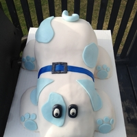 Puppy Cake I made to donate to the Paws for love fundraiser - Was so fun to make!