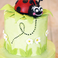 "Ladybug Birthday Cake This cute little ladybug cake was made for my dear friend's daughter's first birthday. The bottom tier was a 6"" round, the..."