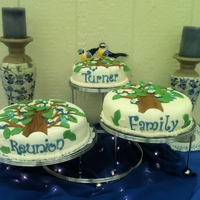 Family Reunion   Cakes were made for my husband's family of 12. Fun to make.