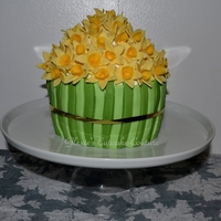 Giant Cupcake tried a new recipe for giant cupcake and decorated it with a bunch of home-made daffodils...