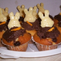 Cupcakes With Chocolate Rabbits Here's chocolate chip cucakes, with some chocolate frosting, a white choclate rabbits head I made and a little bit of orange fondant...