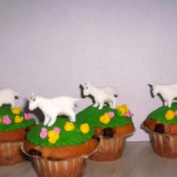 Lamb Cupcakes Cupcakes topped with green fondant and handmade little lambs for a springtime touch.