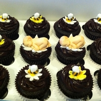 Baby Bee Cupcakes