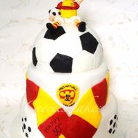 Mens 30Th Motherwell Football Cake   Mens 30th motherwell football cake