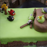 Angry Birds! This is a yellow marble cake, covered in green fondant, featuring fondant sculpture.The Pigs' castle is a marble cakelet, also covered...