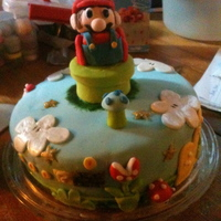 Super Mario Birthday Cake The cake was for a friend, and a super mario fan! around the side of the cake there are different stages and objectives encountered during...