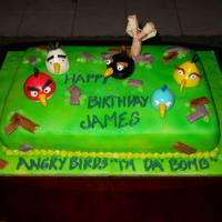 Angry Birds This is an ANGRY BIRDS Birthday cake made with white cake, french vanilla buttercream, and marshmallow fondant. It is air-brushed, and each...