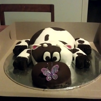 Jersey Cow Cake   Chocolate mud cake with vanilla buttercream and covered in white and chocolate fondant.