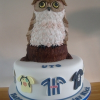 Sheffield Wednesday Owl Cake