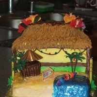 Cabana Cake This is a birthday cake I made for a little girls birthday. I used 2-9x13 cakes to build the cake. It was easier than it looks.