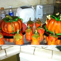 Harvest Party Cake(S) This is a presentation of cakes that I made for our Church Harvest Party in October 2011. This was my first attempt at using my new Duff (c...