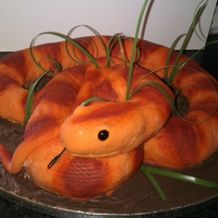 Snake Cake A cake I made in 4 hours for my mom xx