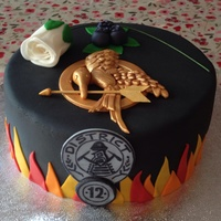 My Daughters 14Th Birthday Cake Shes A Huge Hunger Games Fan So She Loved It My daughter's 14th birthday cake. She's a huge hunger games fan, so she loved it.