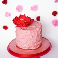 Red Peony, Pink Messy Cake.