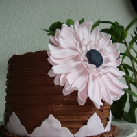 Birthday Cake Pound cake with blueberry- and whit/dark chocoolate creme