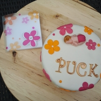 Celebrate A New Baby Girl.... Puck