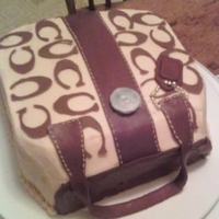 Purse Cake Chocolate cake with buttercream icing and fondant accents.